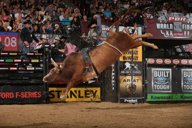 Bonner Bolton Bull