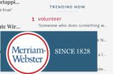 merriam webster dictionary volunteer