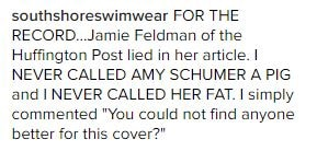 Amy Schumer South Shore Swimwear