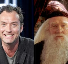 dumbledore jude law richard harris fantastic beasts
