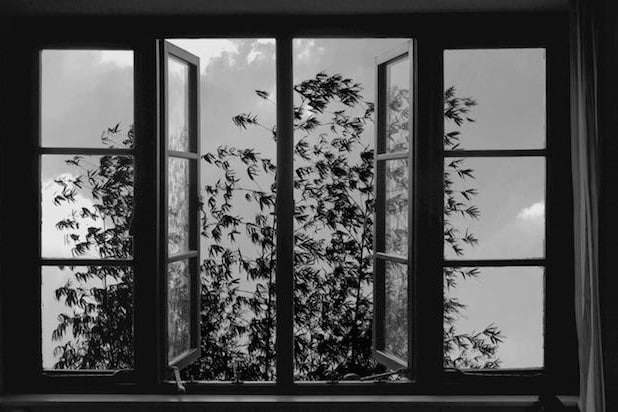 24 Frames Cannes Review Abbas Kiarostamis Final Film Is A Wry