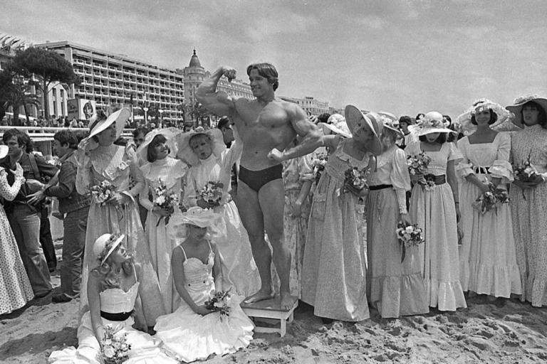 Cannes Stunts