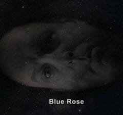 twin peaks revival showtime blue rose major briggs