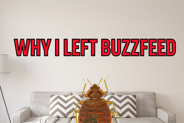buzzfeed bed bugs