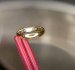 twin peaks revival dougie wedding ring dead body