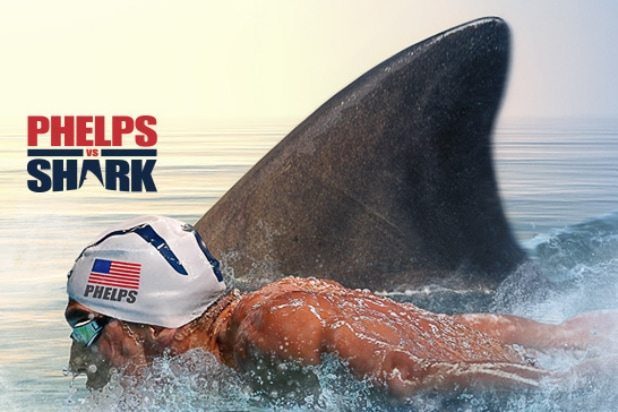 Phelps Vs Shark