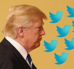 trump tweet twitter storm