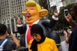 Donald Trump Rat