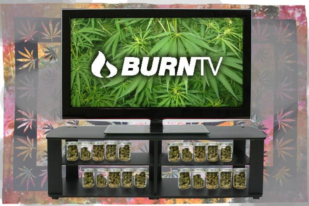 Netflix for Potheads? Welcome to BurnTV, Where Grass Is Always Greener (Video)