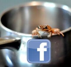 facebook boil frog