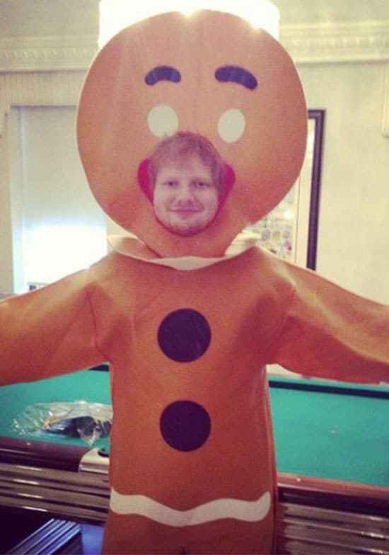 Ed Sheeran gingerbread