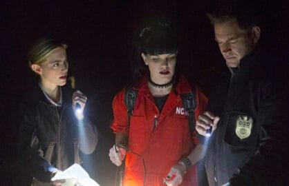 NCIS' Mess: How a Dog-Bite Divided Pauley Perette and Mark