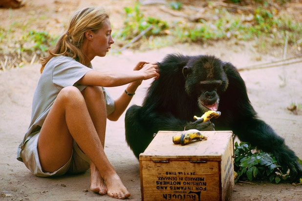 Jane Goodall in Jane