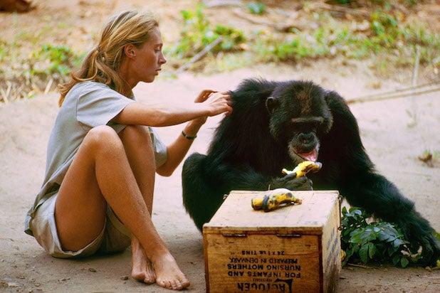 Jane Goodall in Jane