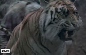 The Walking Dead Tiger Shiva