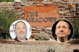 meadows harvey weinstein spacey sex addiction