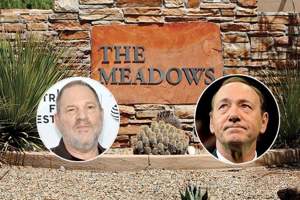 meadows harvey weinstein spacey sex addiction