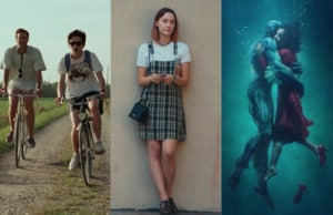 Call Me By Your Name Lady Bird Shape of Water