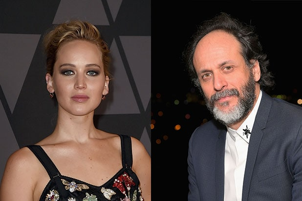 Jennifer Lawrence Luca Guadagnino Burial Rights
