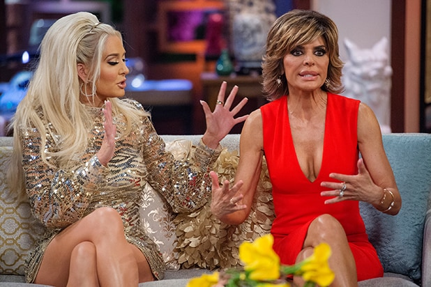 The Real Housewives of Beverly Hills Lisa Rinna