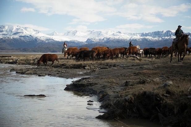 Alaska: The Last Frontier - Super Bull