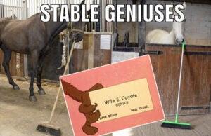 trump stable genius
