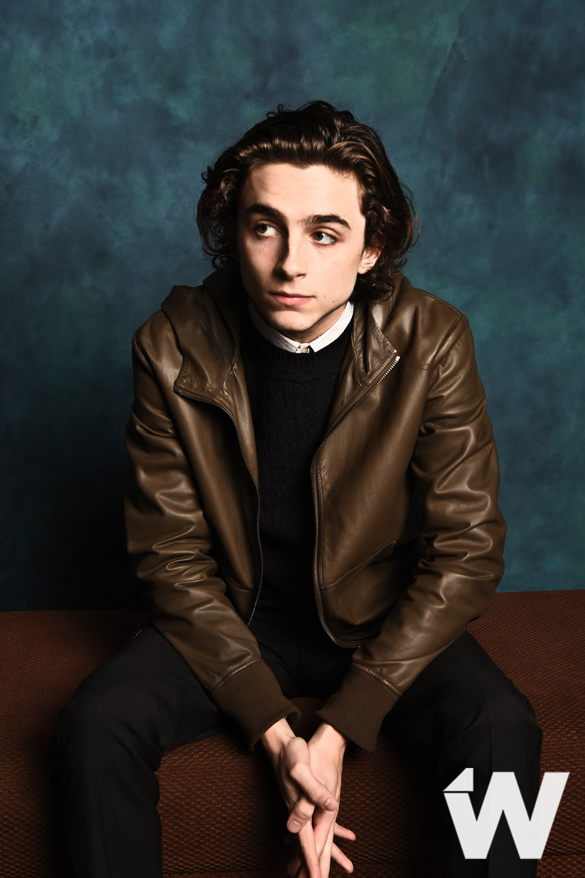 Timothée Chalamet, Call me by your Name