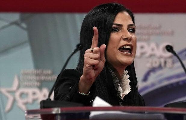 NRA Spokesperson Dana Loesch 2010 'Fired By a Jew' Tweet