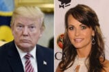 donald trump karen mcdougal