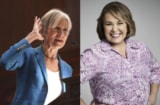 Jill Stein Roseanne Barr Who Is Jill Stein