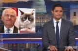 daily show trevor noah rex tillerson grump cat donald trump