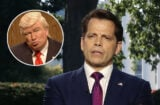 anthony scaramucci donald trump alec baldwin snl