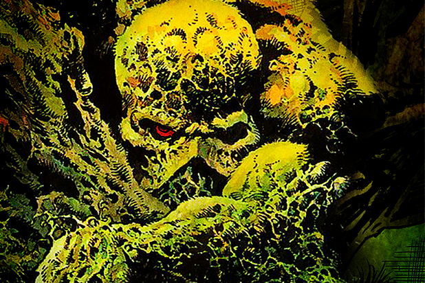 Swamp Thing' TV Series Coming to DC Universe Streaming Platform