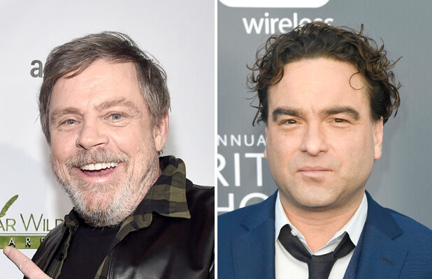 mark hamill johnny galecki roseanne big bang theory
