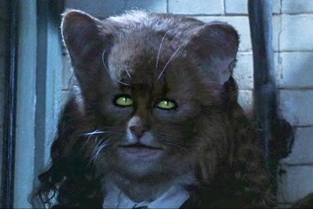 Resultado de imagem para hermione cat