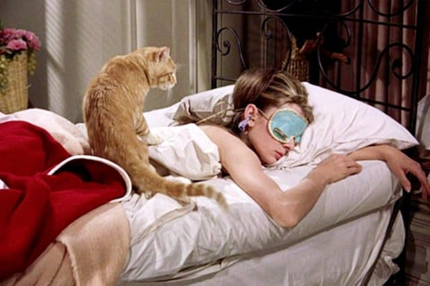 Breakfast at Tiffany's Cat
