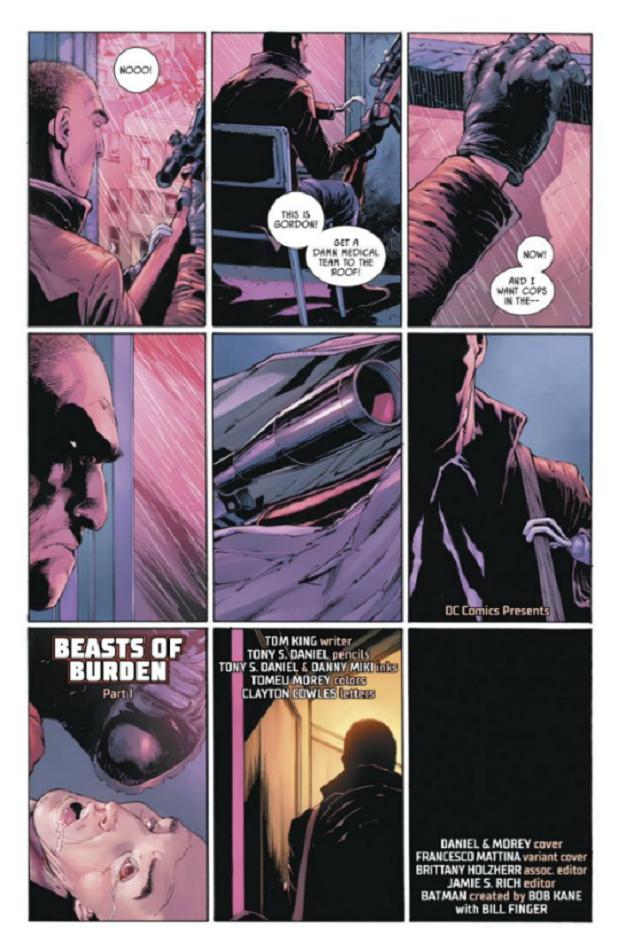 DC Comics Batman Robin