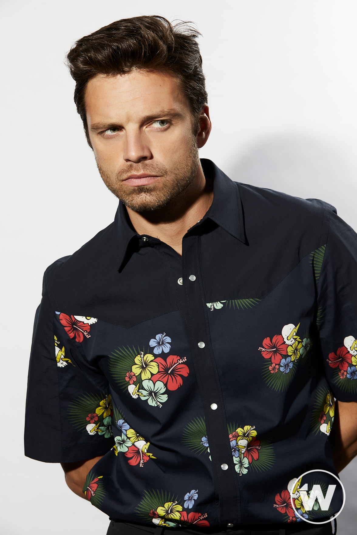 Sebastian Stan, Destroyer