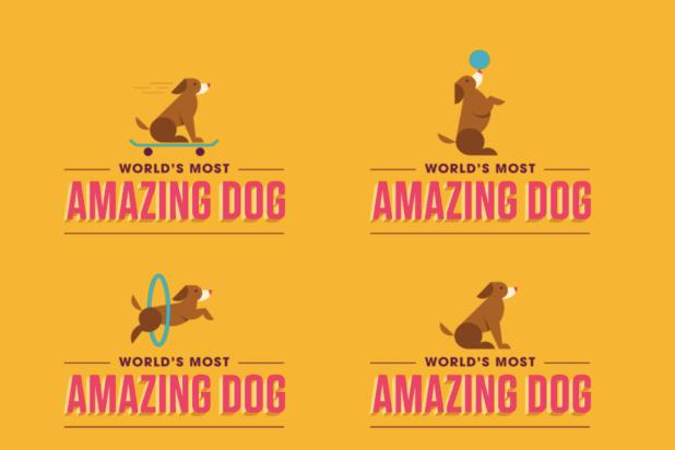 """""""World's Most Amazing Dog"""""""