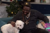 Brian Tyree Henry Olivia the Dog