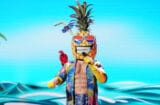 masked singer pineapple