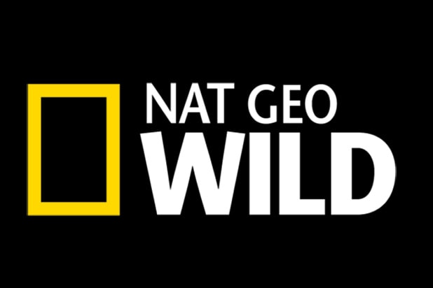 Nat Geo Wild's Spring, Summer Slate: From Dogs to Hippos