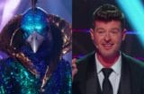 the masked singer peacock robin thicke