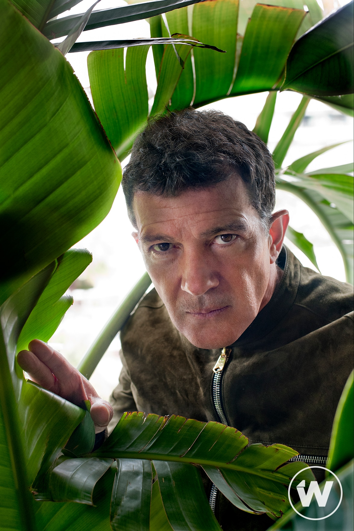 Antonio Banderas, Pain and Glory