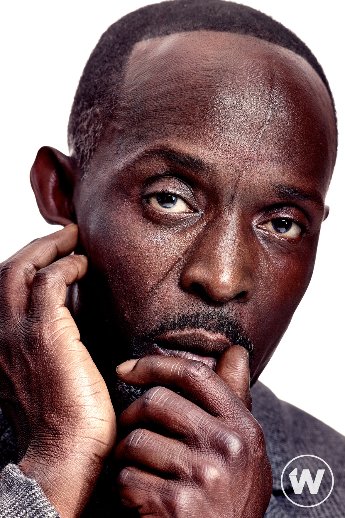 Michael K. Williams, When They See Us