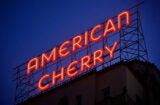 American Cherry 2020