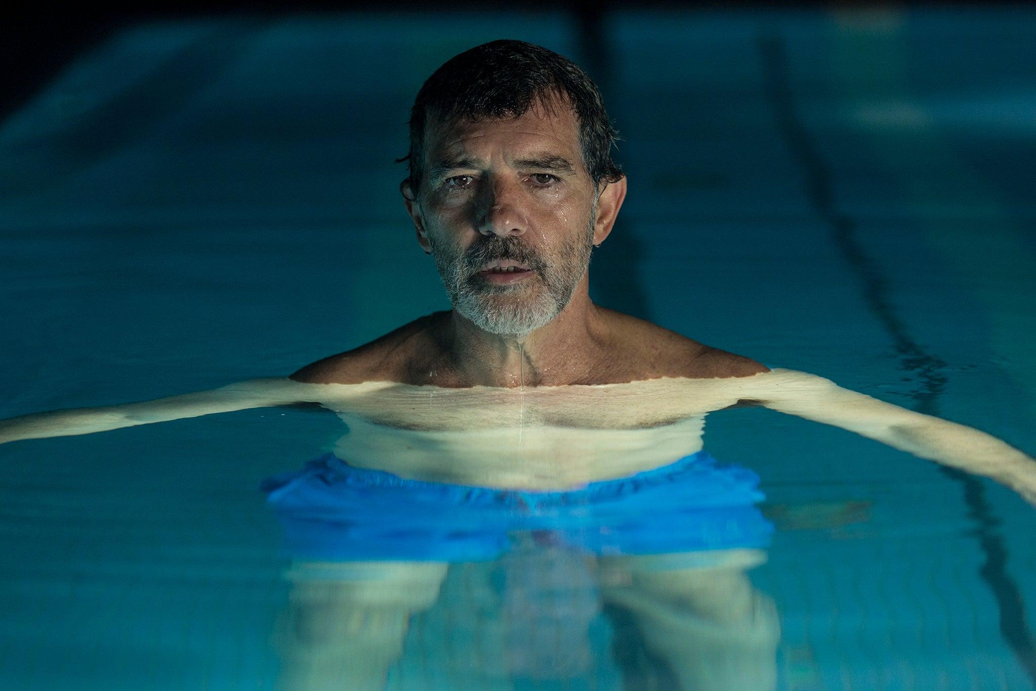 Antonio Banderas as Salvador Mallo