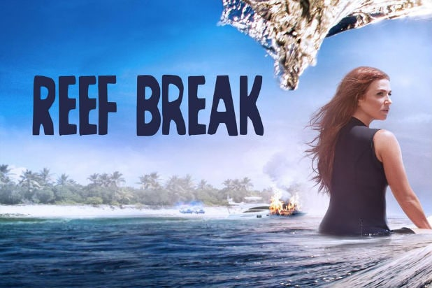 Poppy Montgomery Crime Drama 'Reef Break' Canceled on ABC After One Season
