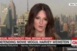 Harvey Weinstein's lawyer, Donna Rotunno, on CNN