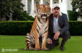 Joe Exotic Donald Trump Coronavirus The Daily Show